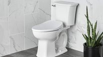It's time to make the ultimate bathroom upgrade: A bidet